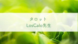 占い師LosCalo